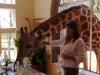 Alto en una sesión fotográfica con cuatro pedazo de chefs, en Giraffe Manor, junto a las kenianas colinas de NGong