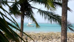 Dhow, una embarcación de vela triangular muy frecuente por la costa Este de África, por la costa de las Quirimbas