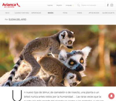 Mi último reportaje sobre los lémures de Madagascar