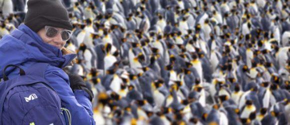 Elena del Amo entre una legión de pingüinos (@luisdavilla)
