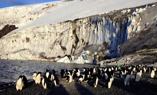 Antártida Mar de Ross, crucero de Heritage Expeditions